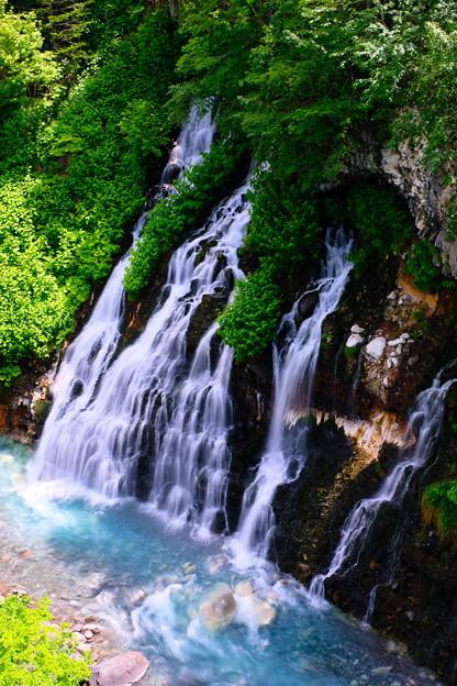 美瑛 白ひげの滝2