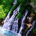 写真: 美瑛 白ひげの滝2