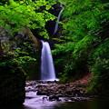 写真: 星置の滝