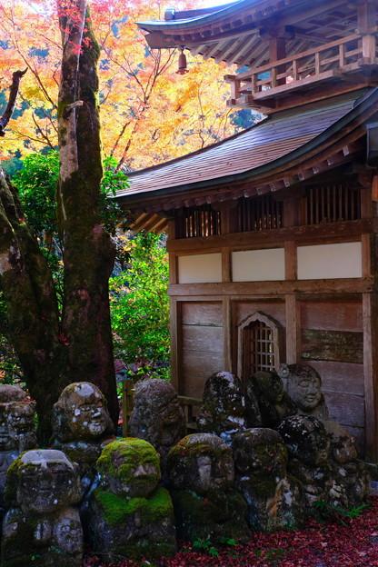 秋の愛宕念仏寺 その5