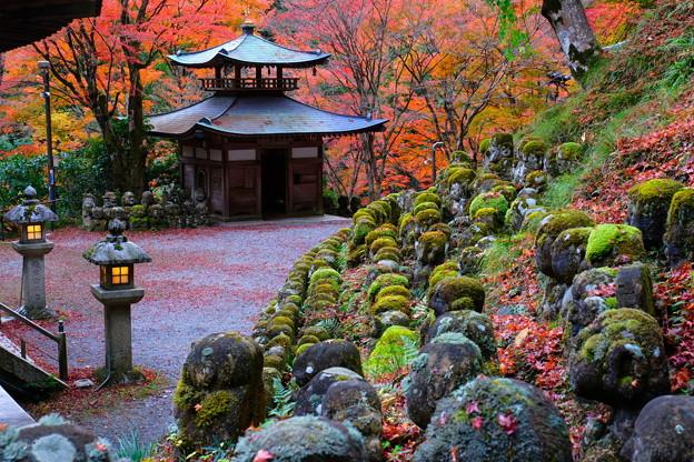 秋の愛宕念仏寺 その6
