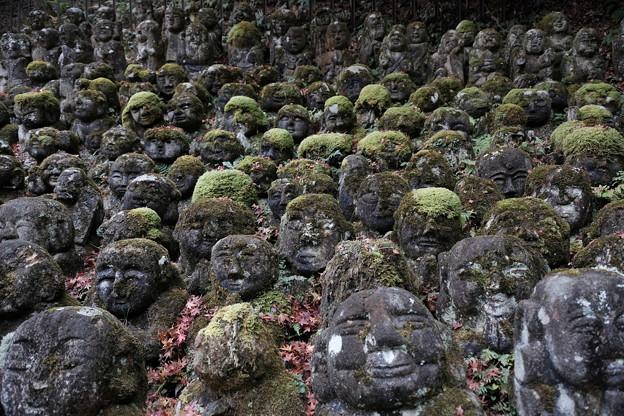 秋の愛宕念仏寺 その8