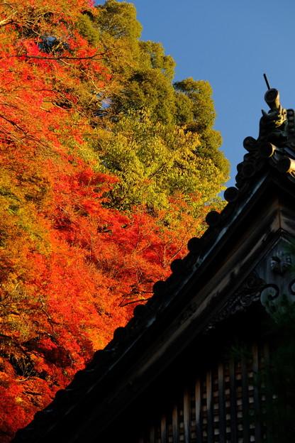 南禅寺方丈