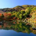 Photos: 錦秋の京都 天龍寺曹源池庭園