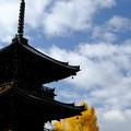 錦秋の京都 真如堂三重塔