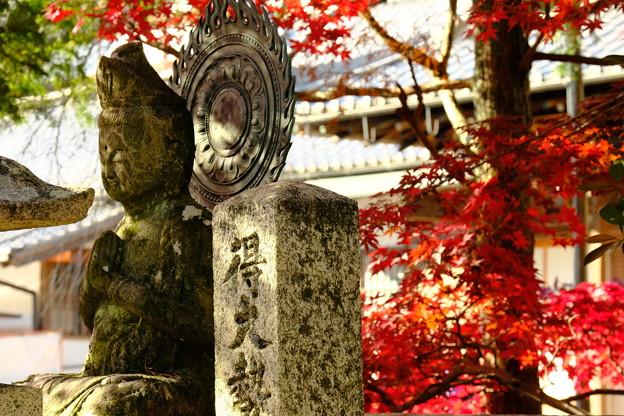 錦秋の京都 光明寺その1