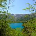 Photos: オコタンペ湖