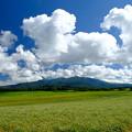 Photos: 大雪高原旭ヶ丘より大雪山を望む その3