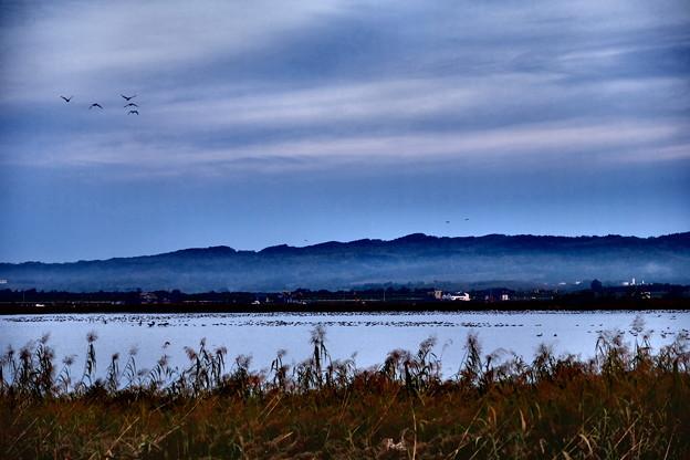 宮島沼の朝