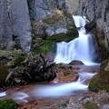 Photos: 紅葉滝