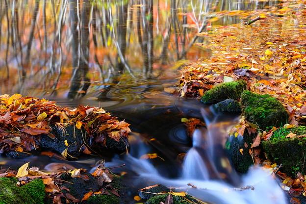 晩秋の渓流 その2