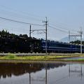 写真: C11 207SL大樹2号(水鏡)
