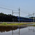 Photos: C11 207SL大樹2号(水鏡)