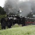 Photos: SLもおか号多田羅発車