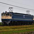 Photos: EF65 2091【国鉄特急色赤プレート更新機】単機回送