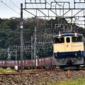 Photos: EF65 2101牽引鹿島貨物1093レ