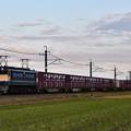 EF65 2101牽引鹿島貨物1092レ