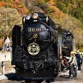 Photos: D51 498 30周年装飾