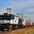 Photos: EF64 1010牽引鹿島貨物1094レ