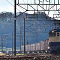 EF65 2139牽引鹿島貨物1093レ