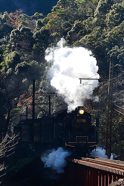 写真: 地名坂に挑むC11 190縦バージョン