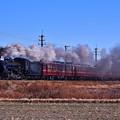写真: C58 363秩父鉄道SL初詣号@大麻生