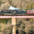 写真: C58 363牽引秩父鉄道SL初詣号(SL PALEO EXPRESS)