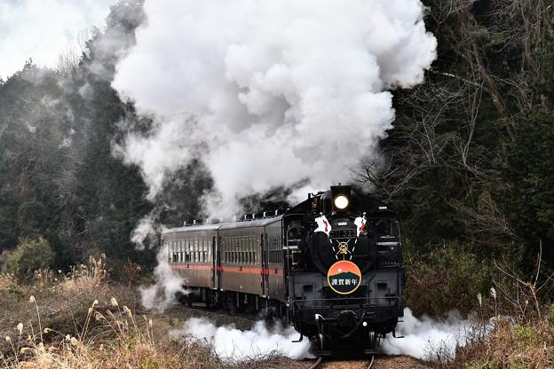 Photos: C11 325牽引真岡鐵道SL新年号2019