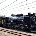 Photos: D51 498 復活30周年記念装飾(SLぐんまよこかわ号)