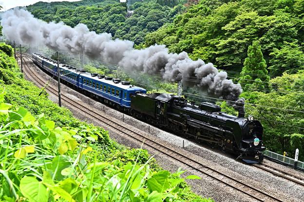 C61 20牽引12系客車SLぐんまみなかみ号(諏訪狭)