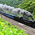 Photos: C61 20牽引12系客車SLぐんまみなかみ号(諏訪狭)