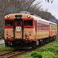 Photos: いすみ鉄道急行2号(キハ28+キハ52)