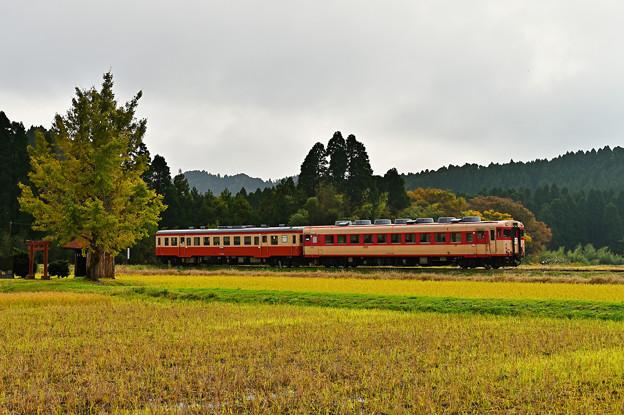 いすみ鉄道キハ28+キハ52普通列車104D