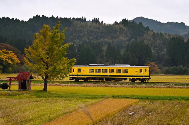 いすみ鉄道いすみ352普通列車68D