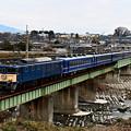 Photos: EF64 1001牽引ELぐんまよこかわ号