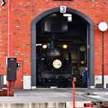 Photos: C11 207SL大樹Strawberry Locomotive HM