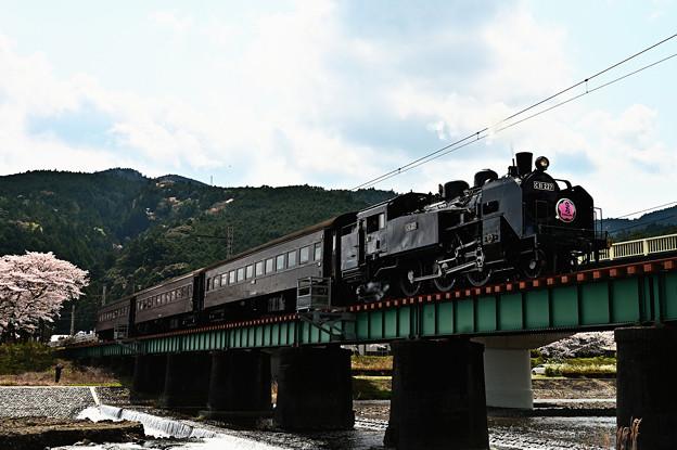 家山川橋梁を渡るC11 227さくらHM付