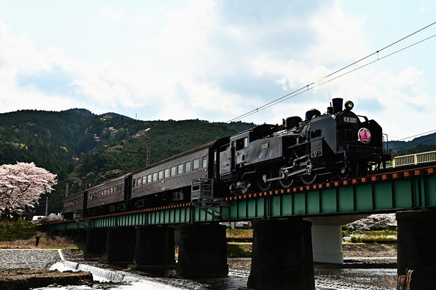 Photos: 家山川橋梁を渡るC11 227さくらHM付