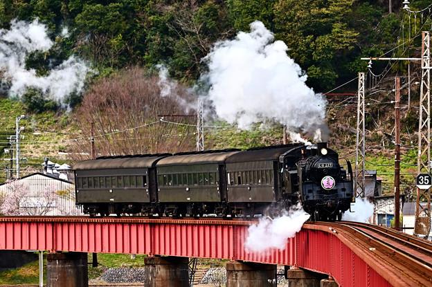 Photos: 大井川第一橋梁を渡るC11 227さくらHM付
