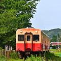 Photos: 小湊鐵道キハ200@上総久保(縦)