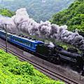 Photos: 雨の諏訪狭を行くD51 498