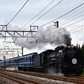 Photos: D51 498渋川発車