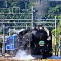 Photos: C61 20牽引SLぐんまみなかみ号水上発車