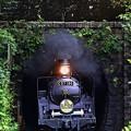 Photos: C57 180陣ケ峰トンネル飛びだし