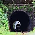 Photos: C57 180トンネル抜き@陣ケ峰トンネル