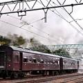 Photos: 走り去る旧型客車