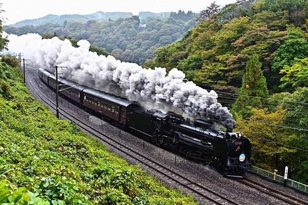 D51 498+旧型客車in諏訪狭