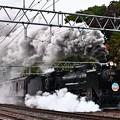 D51 498+旧型客車臨時快速SLぐんまみなかみ号水上発車