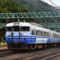 Photos: 115系新潟色臨時快速谷川岳紅葉号回送