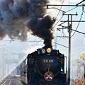 Photos: D51 498(鬼滅の刃×SLぐんま~無限列車大作戦~)